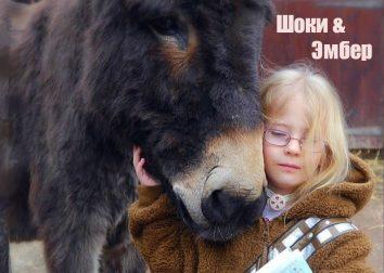 """""""Они исцелили друг друга..."""" Спасённый ослик заставил заговорить немую девочку! :)"""