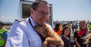 Каждая жизнь важна для них! Авиакомпания организовала специальный рейс для спасения животных от последствий урагана Харви!