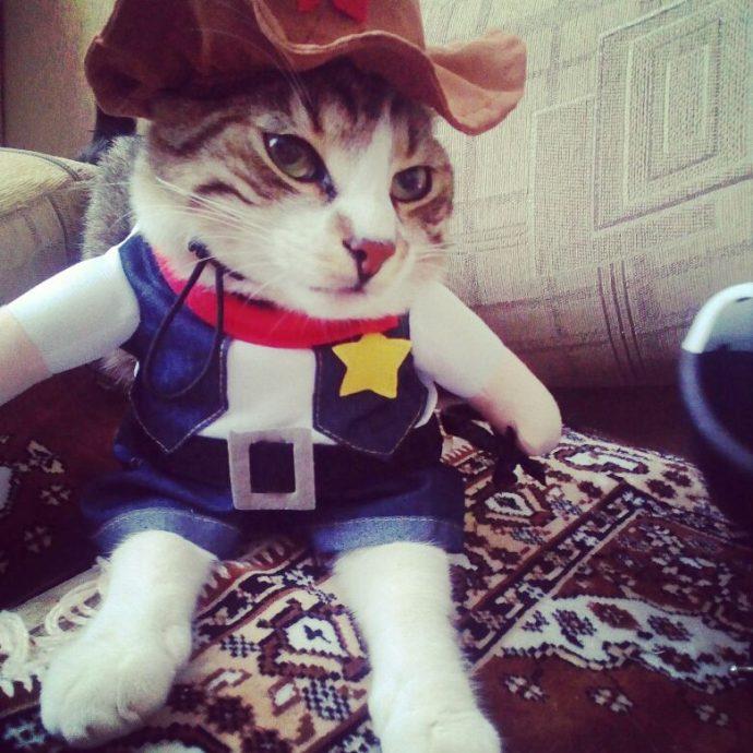 Funny Fashion Pet Dog Cat Clothes Costume