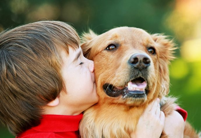 b_0_650_00___images_article-dogs_article-dog-baby-5