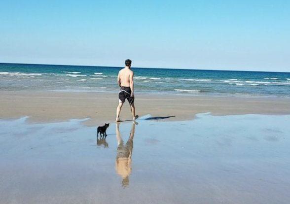 3-beach-cat-e1507125502355