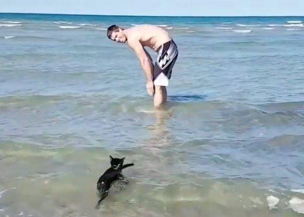 4-beach-cat-e1507126035677 (1)