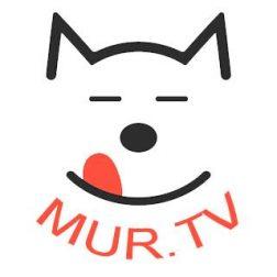mur_tv