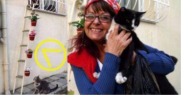 """""""Этот мир не только для людей!"""" Женщина необычным способом спасает бездомных кошек от холодов!"""