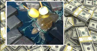 53 миллиона долларов одиноко дрейфовали в океане... И они стали ловушкой для несчастной черепахи!