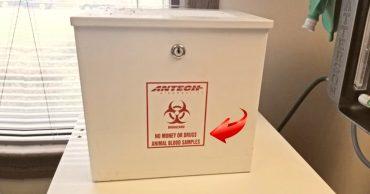 Маленькая жизнь, замкнутая в ящике для анализов... Открыли сейф - и не поверили чуду!